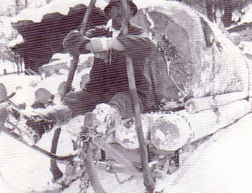 Erste Transportmittel